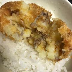コロッケ/おうちごはん/ごはん 手作りコロッケを出来立てご飯にのせて醤油…