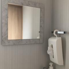 鏡/手洗い場/トイレのインテリア/タオルなし/トイレ収納/ペーパータオルホルダー トイレにタオルはありません。 タオルバー…