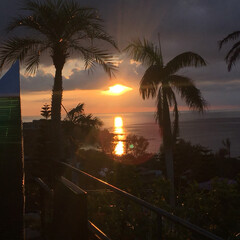 かりゆしビーチ/沖縄の風景/家族旅行/夕日/ヤシの木/沖縄 夏休みの思い出、沖縄。 ヤシの木の間から…