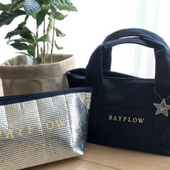 ゴールデンウィーク/ファッション雑貨/トートバッグ/bayflow/付録買い/付録 私のお気に入りバッグ。 BAYFLOWの…