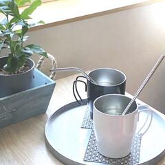 ニトリ購入品/おうちカフェ/私のお気に入り/マグカップ/ニトリステンレスマグロジェ/キッチン雑貨/... お気に入りのカップ。 ニトリのステンレス…