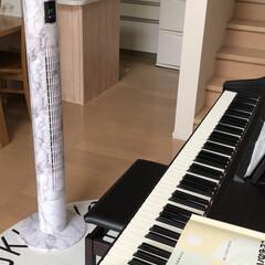 残暑/電子ピアノ/タワー扇風機/タワーファン/扇風機/インテリア おはようございます。 今日も雨。 エアコ…(1枚目)