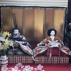 桜アイテム/桜の花びら/雛祭り/ひな人形/雛人形/ピンク 実家から持ってきた雛人形です。 元は八段…