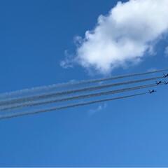 飛行機に見える鳥/飛行機/ブルーインパルス/航空祭 今日は、航空祭でした。快晴だったのですが…(2枚目)