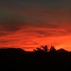 夕景 今日の岐阜は、半端ない暑さでしたかが、夕…