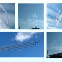 飛行機に見える鳥/飛行機/ブルーインパルス/航空祭 今日は、航空祭でした。快晴だったのですが…