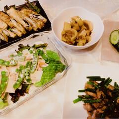タケノコのチーズ海苔巻揚げ/タケノコのサラダ/きゅうりのつけもの/肉/ニンニクの芽/タケノコ/... 穂先の柔らかいタケノコもらったので光さん…