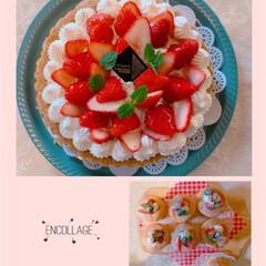 チョコチップマフィン/カップシフォンケーキ/タルト/イチゴ/ありがとう平成/おやつタイム/... イチゴ🍓の季節ももうそろそろ終わりですね…