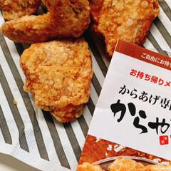立春大吉/クッキー/岐阜城/からやま/Mizukiさん/ハンドメイド/... 今日は、料理研究家のMizukiさんの本…(4枚目)