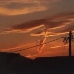 空/雲/夕景 今日は、なんだか不思議な空でしたよ〜晴れ…