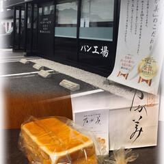 クルトン/食パン/乃が美 乃が美の食パン、また食べたくなって買って…