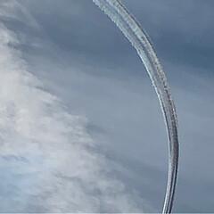 飛行機に見える鳥/飛行機/ブルーインパルス/航空祭 今日は、航空祭でした。快晴だったのですが…(5枚目)