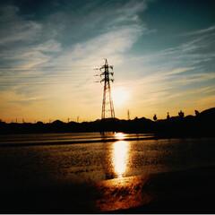 田んぼ道/夕日 昨日の夕景です。 水田に夕日が、反射して…