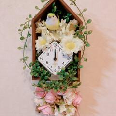 DIY/花時計/ガトーハラダ/バースデーケーキ/甘党大集合 お誕生日おめでとう。 今日は、大切なお友…(2枚目)