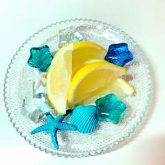 ハーブティー/ガーデンティーレモングラスバタフライピー/ブルー 久々の投稿です。(*⌒▽⌒*) 皆さん、…(4枚目)