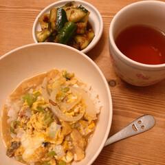 夜ごはん/丼物/どんぶり/おうちごはん/暮らし いつかの晩ご飯~(❁´ω`❁)  親子丼…