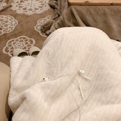 毛布/音楽のある暮らし/しまむら/秋の夜長/秋/インテリア/... 秋の夜長。。*  寒くなって来たので、リ…