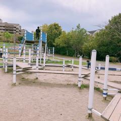 自然/公園/春のフォト投稿キャンペーン/フォロー大歓迎/GW/おでかけ/... GWでお出掛けした近場の公園♪ 迷路みた…