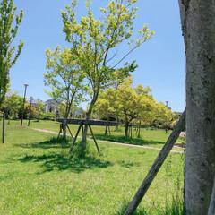 自然/フォロー大歓迎/GW/至福のひととき/おでかけ/風景/... GWのお出掛け♪ 近場の公園へ(❁´ω`…(1枚目)