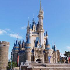 ディズニーランド/シンデレラ城/フォロー大歓迎/おでかけ/旅行 家族旅行で東京ディズニーランドへヽ(*^…