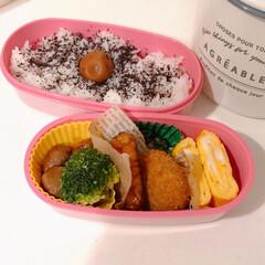 お弁当おかず/お弁当/おうちごはん/暮らし/節約 今日の自分弁当~(❁´ω`❁) 卵焼き久…