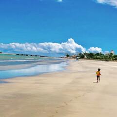 夏/夏休み/日南海岸/マリンブルー/海岸/空/... 夏休みに宮崎の青島と日南海岸へ行きました…(2枚目)