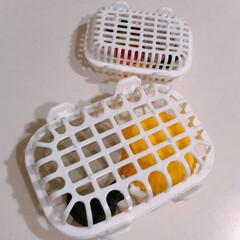 フレッツ/食洗機用/最近買った100均グッズ/100均/暮らし 100円ショップフレッツにて購入した食洗…