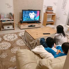 ラグ/しまむら/アニメ/テレビ/コタツ/こたつ/... 金曜日、もののけ姫を見る子供達♪  何度…(1枚目)