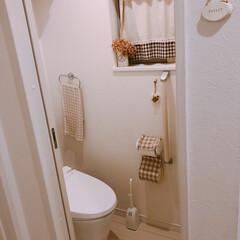 トイレ/フォロー大歓迎/インテリア/住まい/掃除 断捨離したもの。 真ん中位に映ってるトイ…(1枚目)