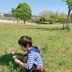 公園/自然/フォロー大歓迎/LIMIAおでかけ部/おでかけ/わたしのGW GWのお出掛け♪ 子供達連れて公園へ(o…