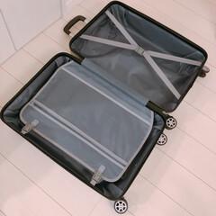サリュ/スーツケース/salut/フォロー大歓迎/雑貨 サリュのスーツケース、開けたところですヽ…