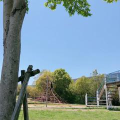 公園/自然/フォロー大歓迎/GW/LIMIAおでかけ部/おでかけ/... GWのお出掛け♪ 近場の公園へヽ(*^^…