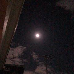 満月/中秋の名月/風景/住まい/フォロー大歓迎 中秋の名月(*´▽`)**  ぽっかり満…