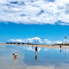 夏/夏休み/日南海岸/マリンブルー/海岸/空/... 夏休みに宮崎の青島と日南海岸へ行きました…(4枚目)