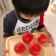 ゼリー/フォロー大歓迎/グルメ/スイーツ/キッチン/バレンタイン2019 小6のお姉ちゃんが作ってくれたイチゴゼリ…