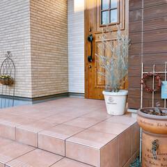 ガーデニング/エレモフィラニベア/植木鉢/ガーデン雑貨/フォロー大歓迎/雑貨/... エレモフィラニベアの鉢をホームセンターに…