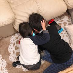 動画/フォロー大歓迎/冬/おうち/インテリア/住まい 昨日♪ 兄弟一緒に動画見てるのが可愛かっ…