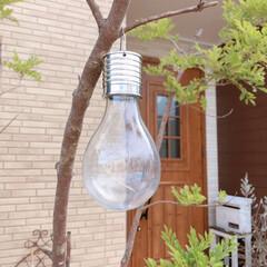 電球/ソーラーライト/雑貨/暮らし/フォロー大歓迎/LIMIAインテリア部/... こんばんは✩.*˚  ソーラーライトの電…
