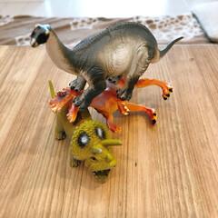 フィギュア/恐竜/おもちゃ/おうち/雑貨 末っ子君の恐竜遊び。。♪ そのままテーブ…