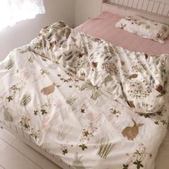寝室/布団カバー/雑貨/暮らし/ニトリ ニトリのネットショップで購入した新しい布…