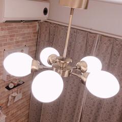 照明/ダイニング/フォロー大歓迎/雑貨/インテリア/家具/... 我が家のダイニング照明です♪  コロンと…