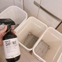 ダストボックス/大掃除/ゴミ箱/住まい/掃除/暮らし/... ゴミ箱スッキリ丸洗い♪  ゴミ箱の水気を…