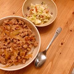 夜ごはん/そぼろ丼/おうちごはん/住まい/暮らし 昨日の晩ご飯(❁´ω`❁)  牛肉と鶏ひ…