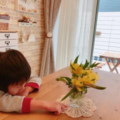 ダイニング/お花のある暮らし/切り花/お花の定期便/medelu/お花 medeluさんから届いたお花**  末…