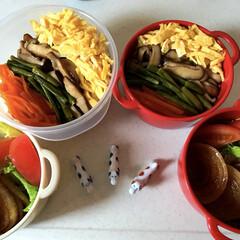 ボヌール/お弁当 今日は 4色丼🤗 適当にある物で作ったよ…