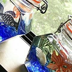ハーバリウム/金魚の透明シール おはようございます。 一昨年作った金魚の…(2枚目)
