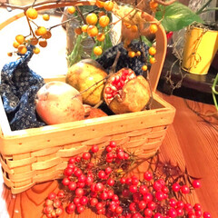 紅茶豚/鮭の粕汁/木ノ実/ザクロ/秋/おうちごはん 庭のザクロの木に実がなっていたので、採っ…