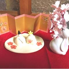 ひな祭りは旧暦でやります/写真ヘタでごめんなさい/リミ友の輪/クレイの桜/クレイフラワー/ウサギの一輪挿し/... クレイフラワーの桜が届きました✨ クレイ…(6枚目)