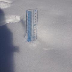 あけおめ/フォロー大歓迎/冬/おでかけ/風景 冬といえば雪❄️ 寒かったけど楽しかった…(2枚目)