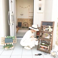 グリーン/DIY/インテリア/ニトリ/玄関 いつかの休日です♩